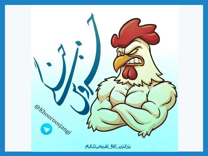 تبلیغات در کانال تلگرام خروس جنگی (تبلیغات بازدیدی)